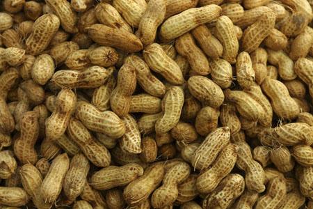 arachides-cacahuetes