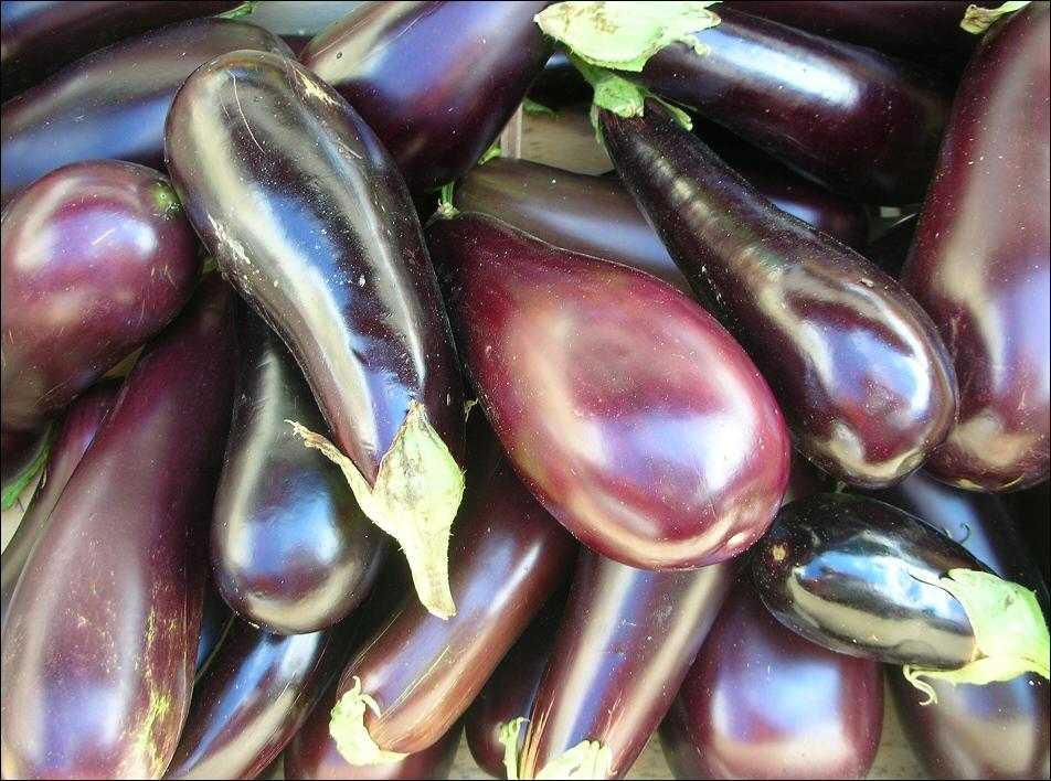 aubergines_