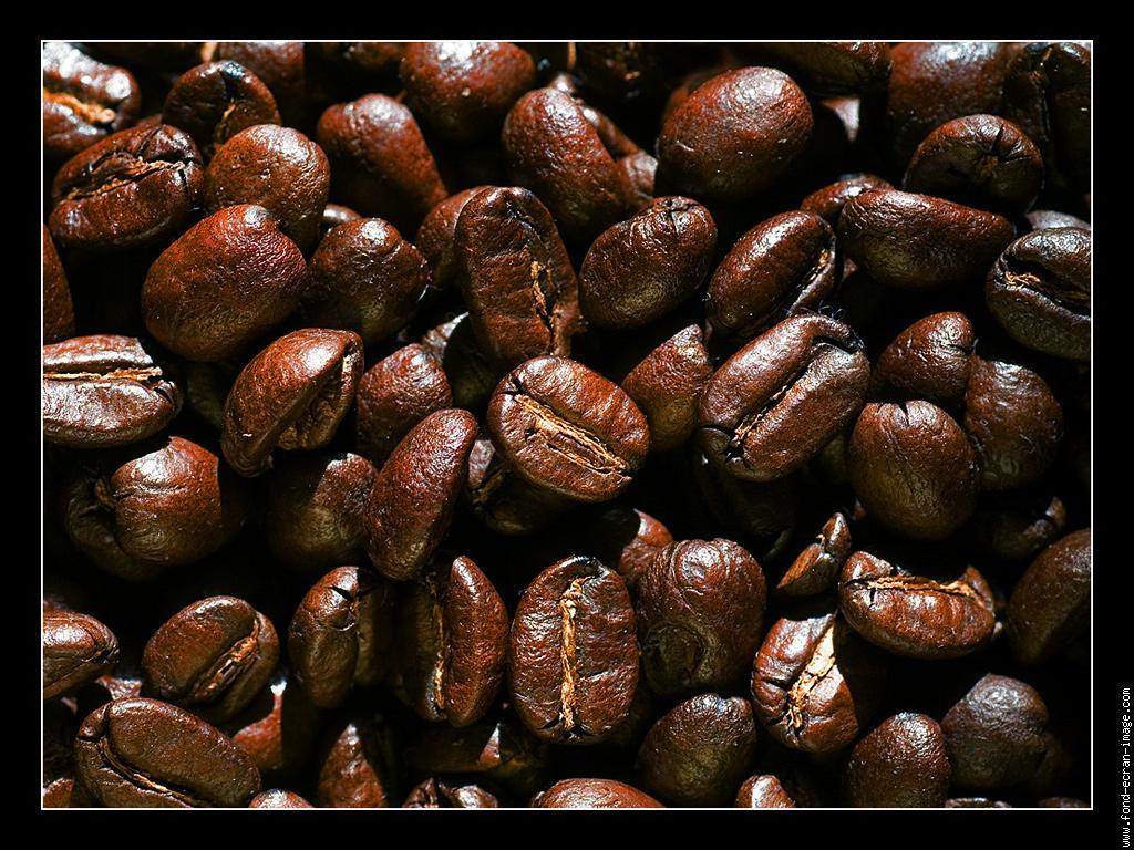grain-cafe-02